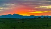 3rd Jun 2020 - Yellowstone Sunset