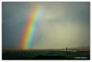 4th Jun 2020 - Somewhere over the Rainbow..