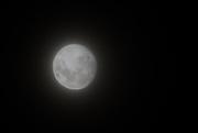 4th Jun 2020 - Foggy Moon
