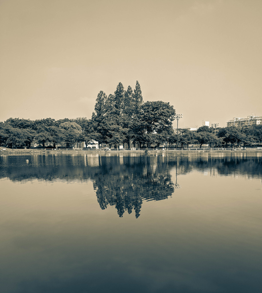 Tranquility by tokyobogue