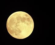 5th Jun 2020 - Strawberry Full Moon