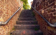 6th Jun 2020 - Steps