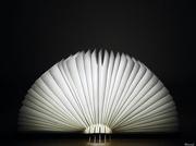 6th Jun 2020 - Lamp