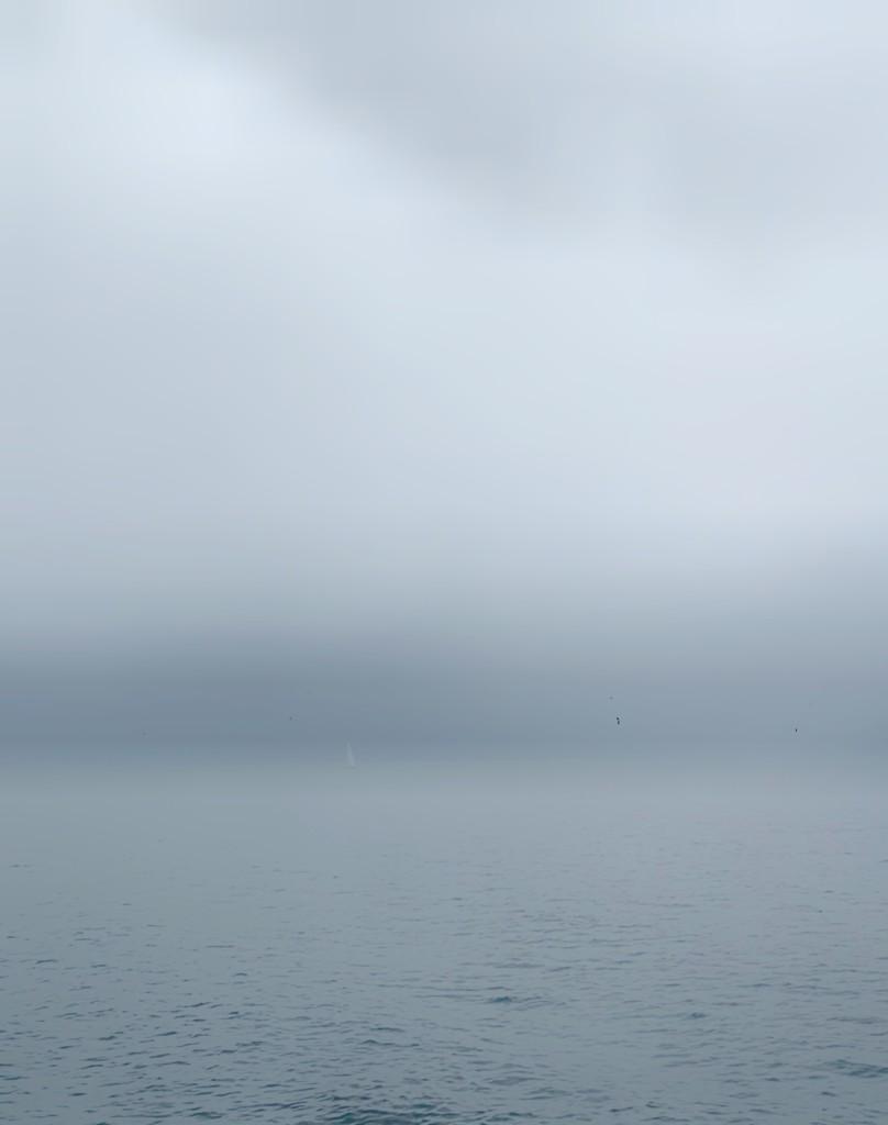 Lake/smog/sky.  by cocobella