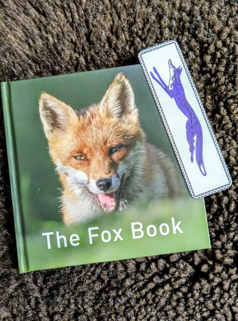 The Fox Book by boxplayer