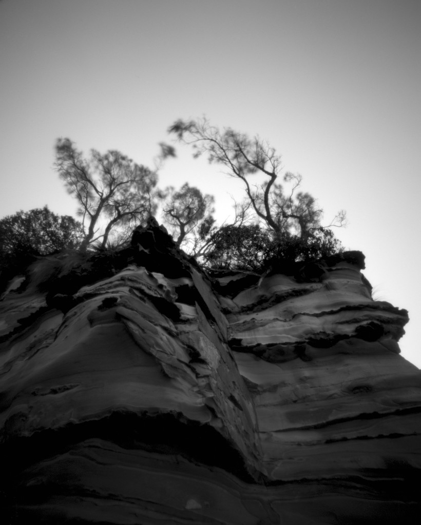 Beneath cliff topped by casuarinas by peterdegraaff