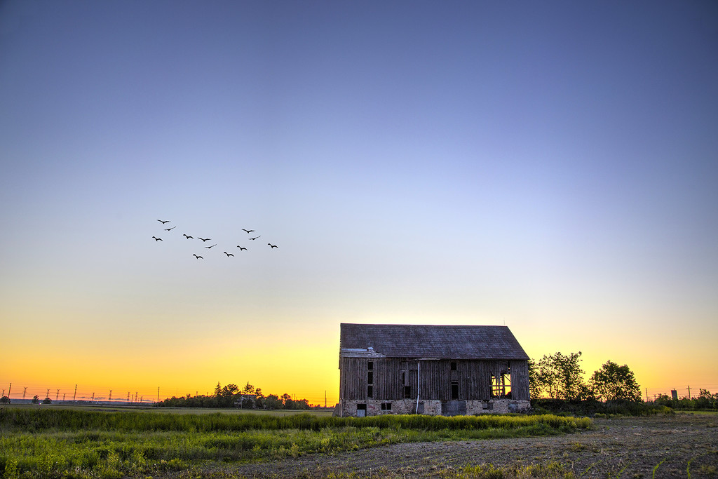Abandoned Barns of Ontario by pdulis
