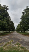 9th Jun 2020 - At the end of that very long, long, long driveway,