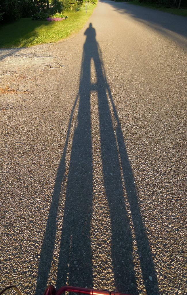 Evening walk by octogenarian