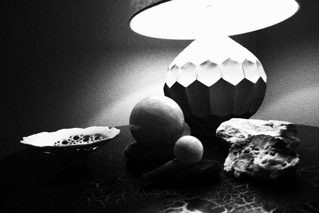Black and White sooc by sandradavies