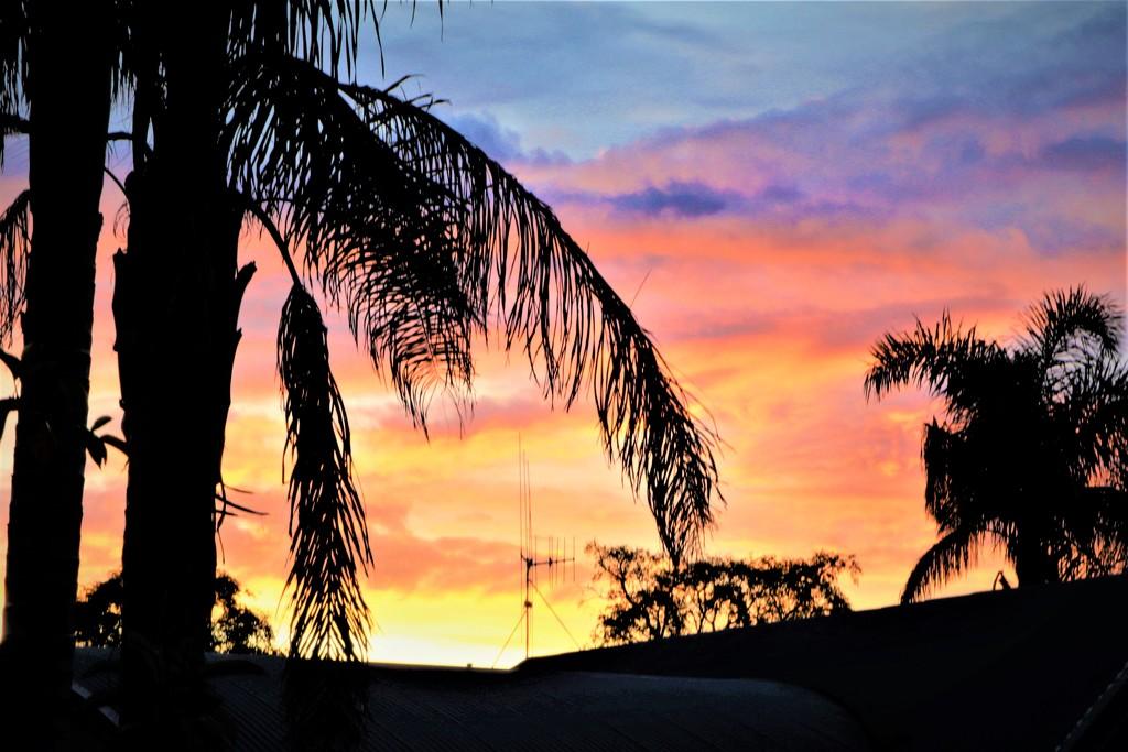 Sunset by sandradavies