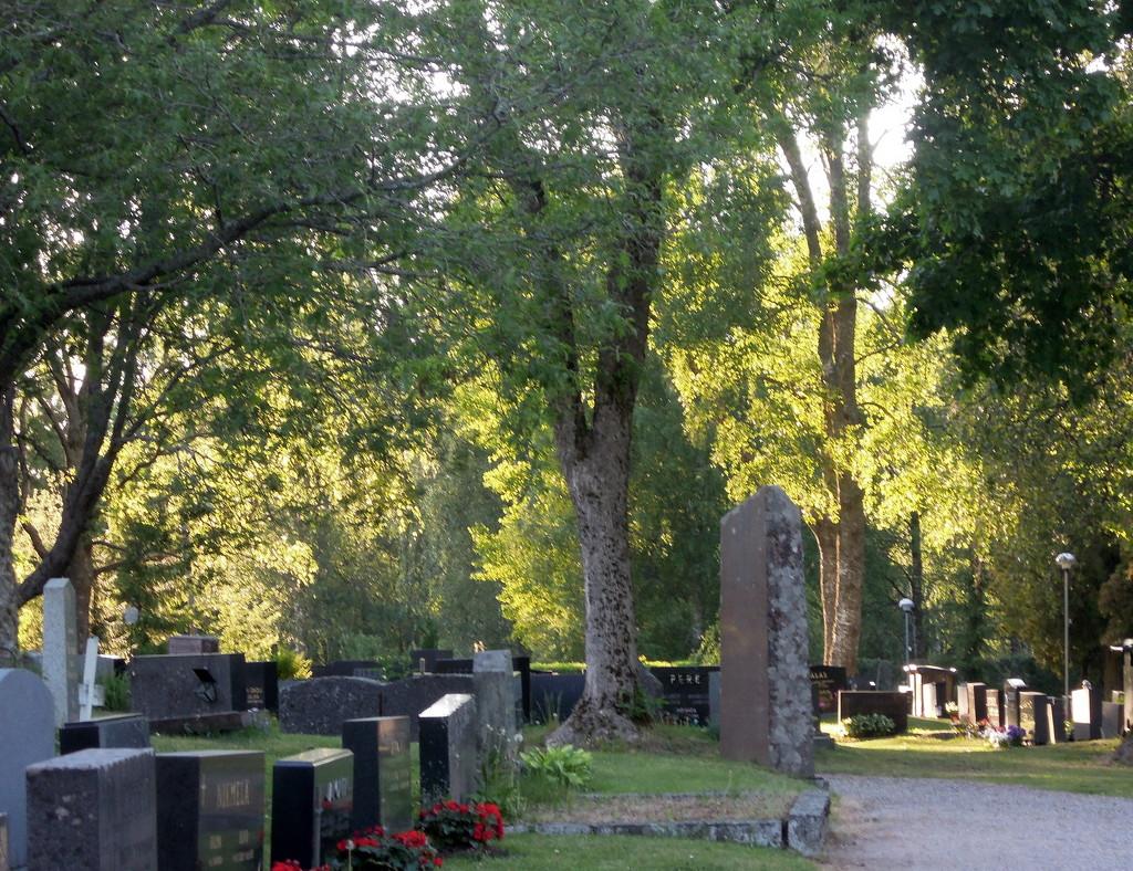 Graveyard by octogenarian
