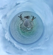 13th Jun 2020 - A tiny planet with seahorses.