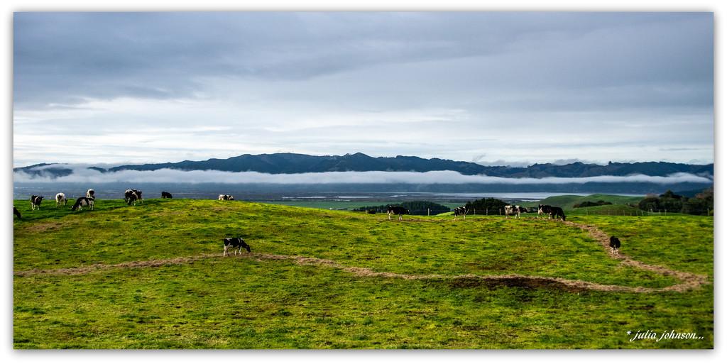 Aotearoa.... Land of the Long White Cloud.. by julzmaioro