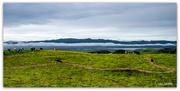 13th Jun 2020 - Aotearoa.... Land of the Long White Cloud..
