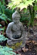 9th Jun 2020 - 9th June Buddha