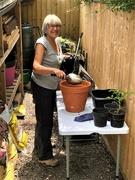13th Jun 2020 -  Gardening