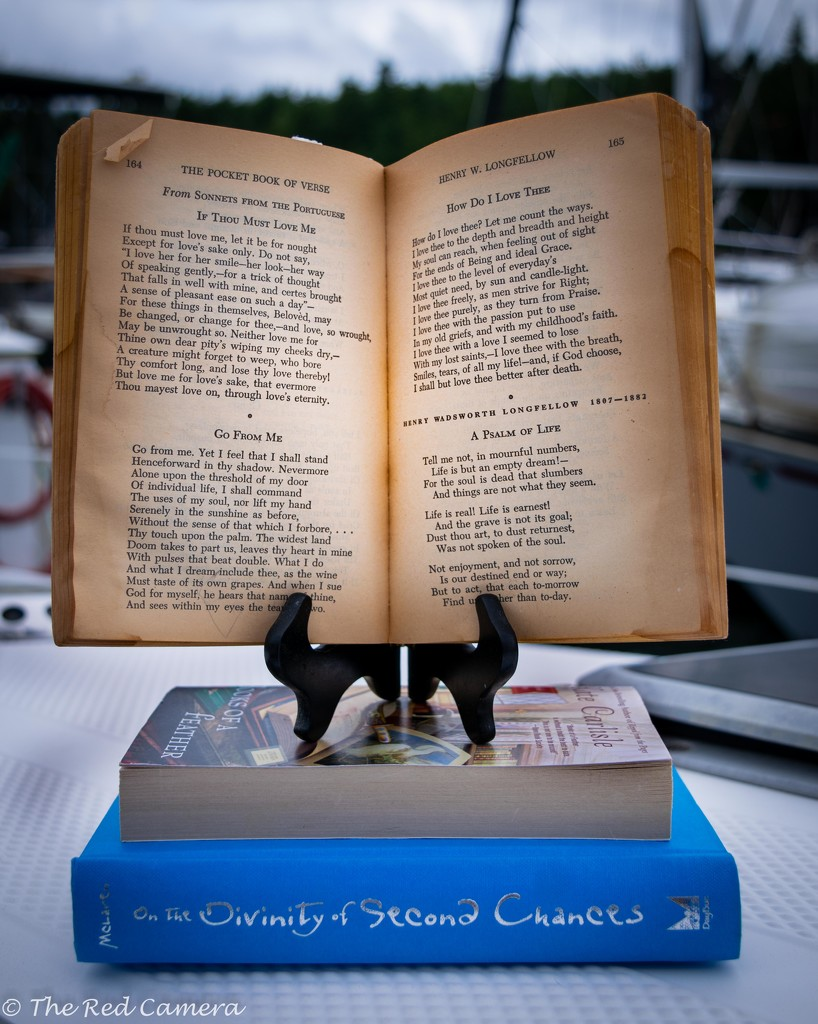 Old Book, New Book, Blue Book, Borrowed book   by theredcamera