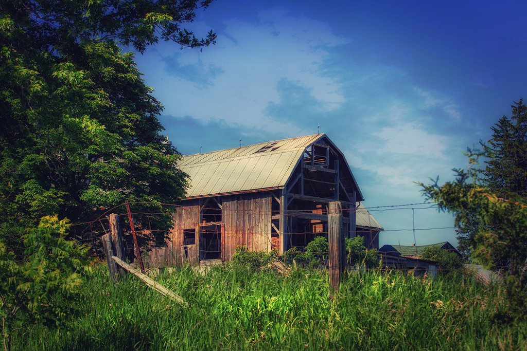 King City Abandoned Barn by pdulis