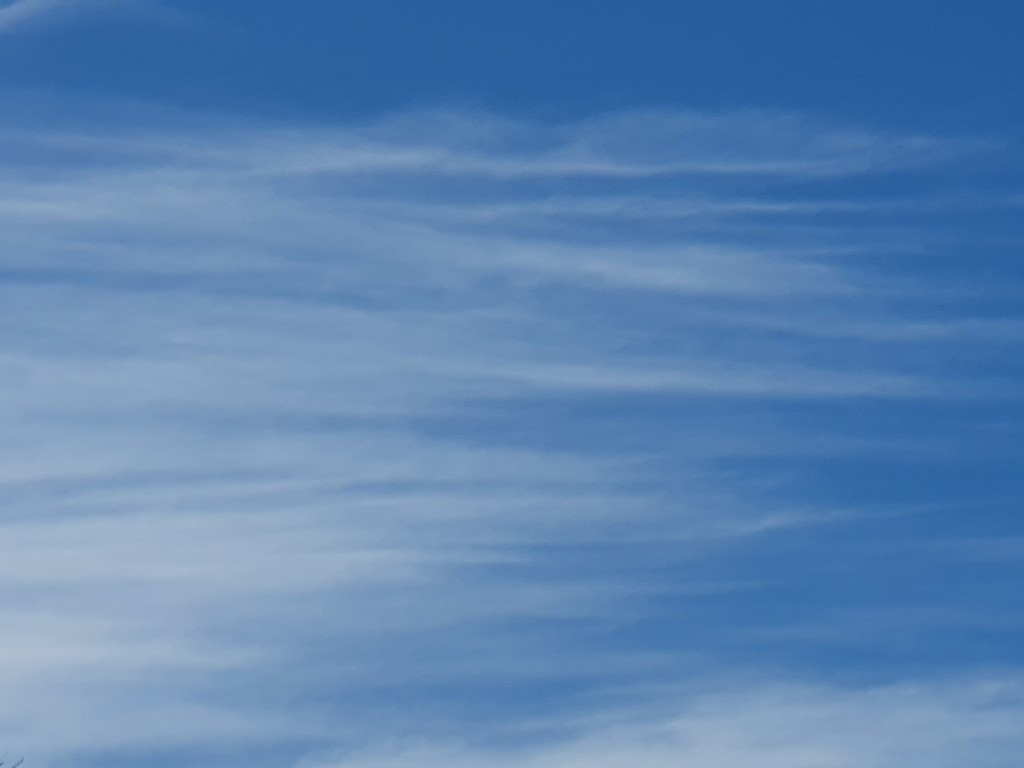 20200612_101238 Sky by summeradelaide