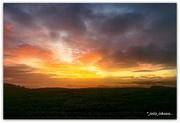 14th Jun 2020 - Hard to resist a good bit of Morning Light..