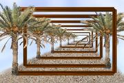 14th Jun 2020 - Framed palm trees....