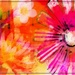 Flower Power by olivetreeann