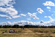 14th Jun 2020 - Picnic on the marshes