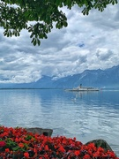 19th Jun 2020 - Le Vevey.