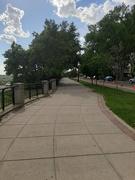 17th Jun 2020 - The Promenade
