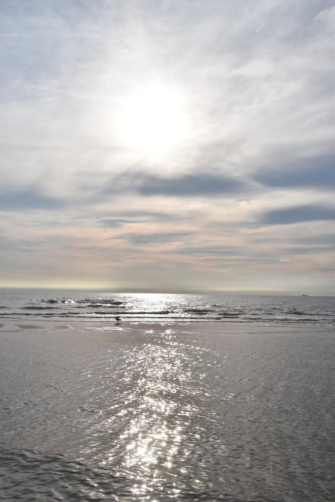 the shore near Callantsoog by beefy2