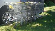 18th Jun 2020 - Shopping Carts Gone Wild!