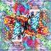 Wild and Wacky Butterflies by olivetreeann