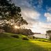 Tāpapakanga Regional Park by yorkshirekiwi