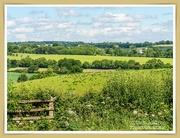 20th Jun 2020 - Northamptonshire Landscape