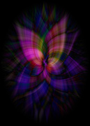 21st Jun 2020 - Stained Glass Daisy