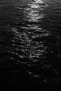 21st Jun 2020 - Water Dark