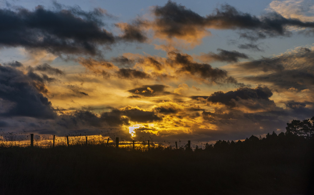 Driving Home from Auckland by nickspicsnz