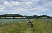 22nd Jun 2020 - Cycling the linseed trail