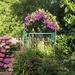 Vignouse Garden by s4sayer