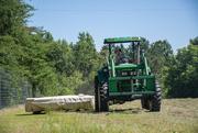 23rd Jun 2020 - The hay cutting begins...