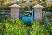 24th Jun 2020 - Blue Gate