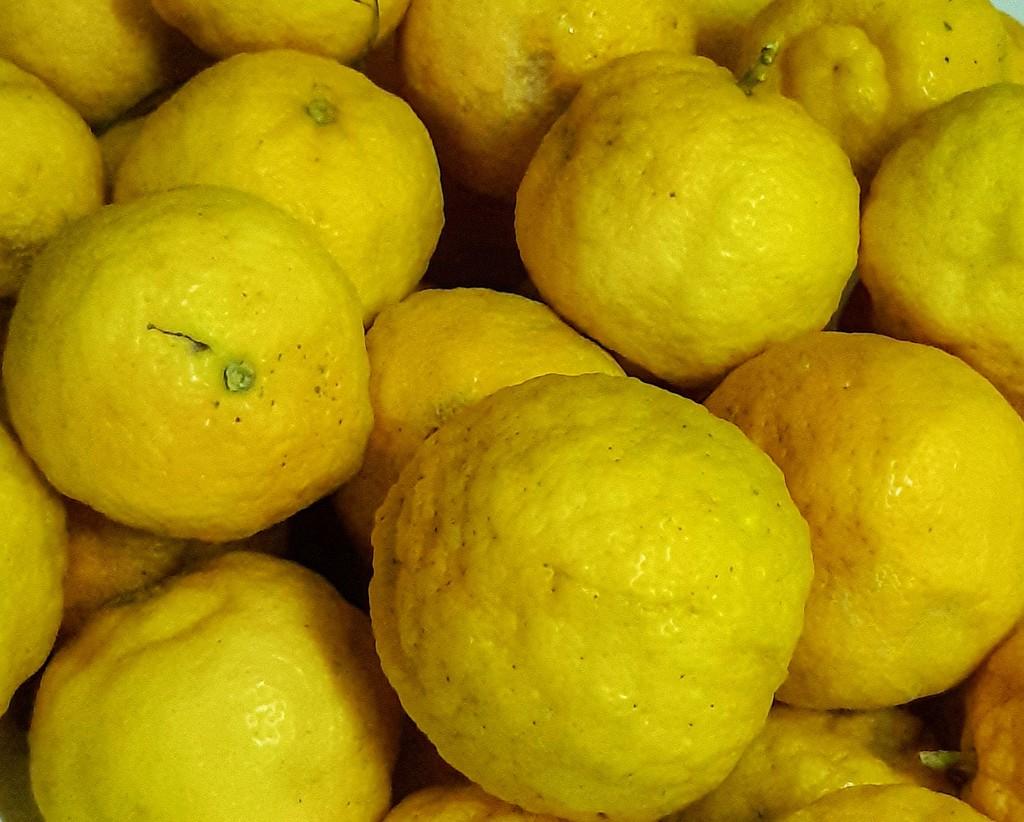 Lemons by salza