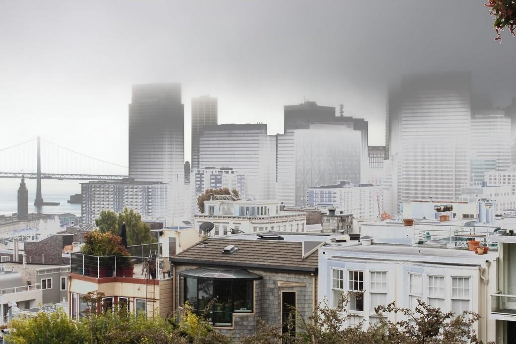 San Francisco Fog by blueberry1222