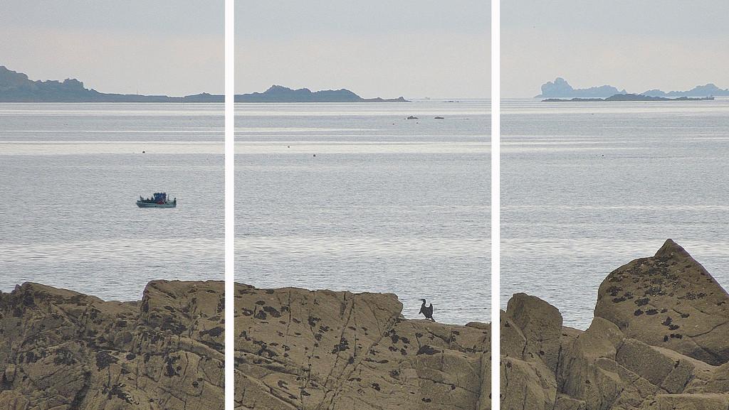 Seashore scene by etienne