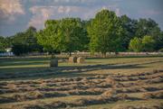 26th Jun 2020 - Hay baling in process...