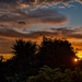 Colourful Sky From The Garden. by tonygig