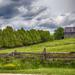 Holland Marsh Barn