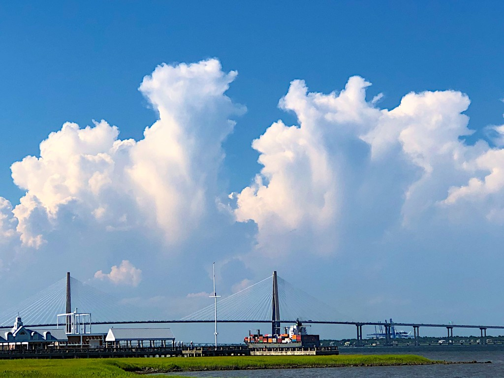 Summer clouds over Charleston Harbor at Waterfront Park by congaree