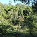 Oxley Creek